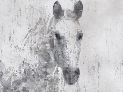 https://imgc.allpostersimages.com/img/posters/dapple-horse-i_u-L-Q1I8X420.jpg?artPerspective=n