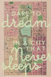 Affordable Maps of Central Park Posters for sale at AllPosters.com on