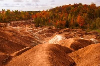 Cheltenham Badlands by Darlene Hewson
