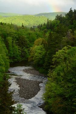 A Scenic View of a River Through a Forest, and a Rainbow from the Cabot Trail by Darlyne A. Murawski