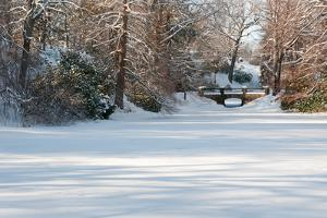 A Snow-Covered Landscape with a Pond, Trees, and a Footbridge by Darlyne A. Murawski