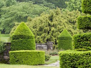 A Topiary Garden in Spring by Darlyne A. Murawski