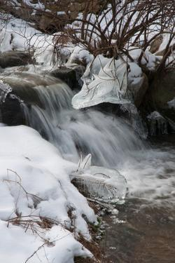A Winter View of Paine's Creek with Ice and Snow by Darlyne A. Murawski