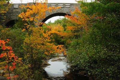 Carriage Road Bridge at Duck Brook in Acadia National Park