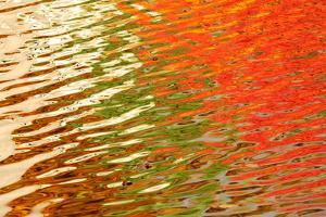 Colorful Fall Foliage Reflected on the Rippling Surface of a Pond by Darlyne A. Murawski