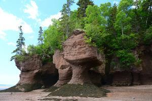 Flowerpot shaped rocks carved by erosion due to the extreme tides of the Bay of Fundy. by Darlyne A. Murawski