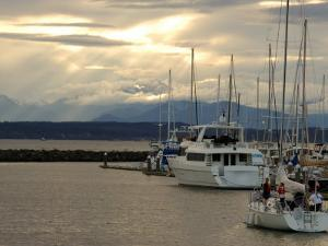 Scene of Boats in a Seattle Marina and the Olympic Mountain Range in the Distance by Darlyne A. Murawski