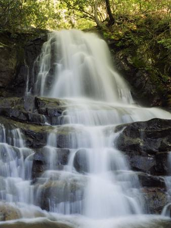 Scenic View of Laurel Falls in the Smoky Mountains