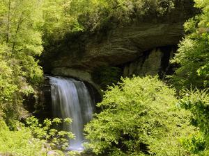 Scenic View of Looking Glass Falls in Spring by Darlyne A. Murawski