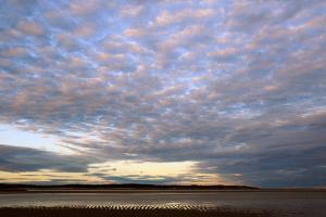 Sunrise at the Payne's Creek Intertidal Zone by Darlyne A. Murawski
