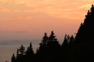 Sunset View of the Gulf of Saint Lawrence and Silhouetted Evergreen Trees by Darlyne A. Murawski
