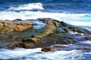 Surf and Exposed Rock at High Tide Near Neil's Harbor by Darlyne A. Murawski
