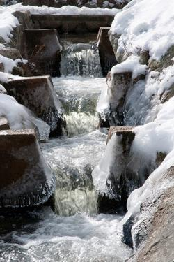 The Paine's Creek Herring Ladder with Ice and Snow in Winter by Darlyne A. Murawski
