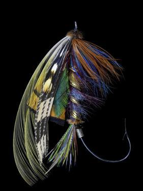 Atlantic Salmon Fly designs 'Blacker Ghost' variation by Darrell Gulin