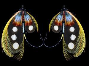 Atlantic Salmon Fly designs 'Western Illusion' by Darrell Gulin