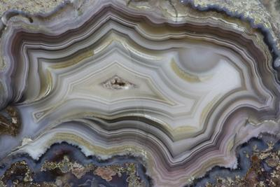 Banded Mexican Agate, Sammamish, WA by Darrell Gulin