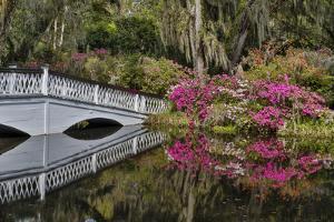 Bridge crossing pond Springtime azalea blooming, Charleston, South Carolina. by Darrell Gulin