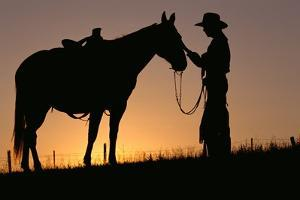 Cowboy Petting Horse at Sunset by Darrell Gulin