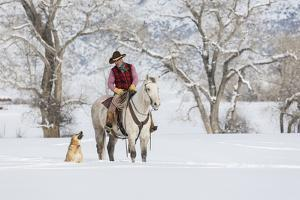 Cowboy riding his horse in winter, Hideout Ranch, Shell, Wyoming. by Darrell Gulin