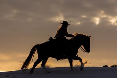 Cowgirl riding her horse in winter, Hideout Ranch, Shell, Wyoming. by Darrell Gulin