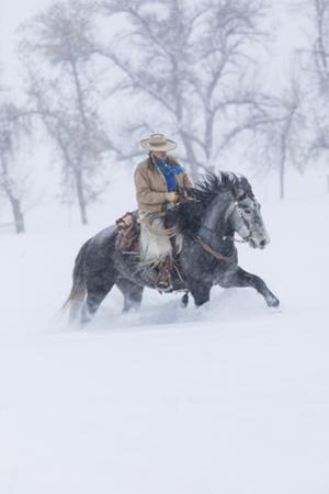 Cowgirl riding her horse wintertime Hideout Ranch, Shell, Wyoming. by Darrell Gulin