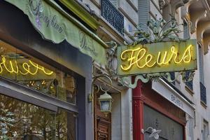 Flower shops neon sign streets of Paris. by Darrell Gulin