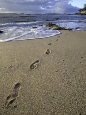 Footprints in the Sand, Turtle Bay Resort Beach, Northshore, Oahu, Hawaii, USA by Darrell Gulin