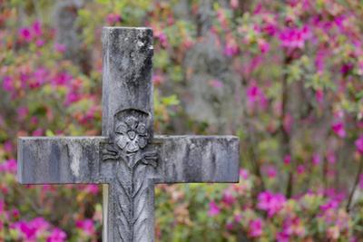 Grave stones and springtime bloom of azaleas in a Cemetery, Savannah, Georgia by Darrell Gulin