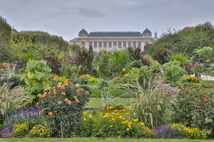 Jardin des plantes and Grande Galerie de l'Evoiution Paris, France by Darrell Gulin