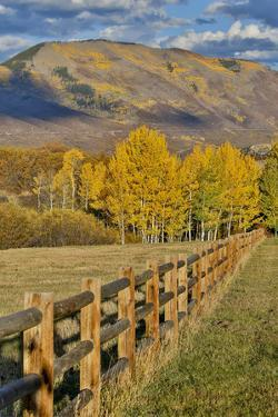 Mountains around Township of Aspen fall along Owl Creek Road with wooden fence autumn. by Darrell Gulin