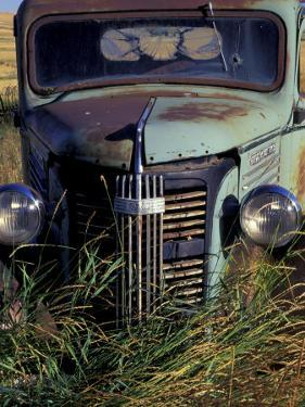 Old Truck in Field, Gennesse, Idaho, USA by Darrell Gulin