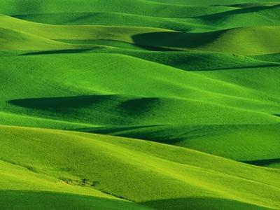 Palouse Hills by Darrell Gulin
