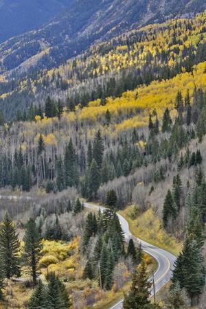 Road along Crystal River taken from just below McClure Pass, Colorado by Darrell Gulin