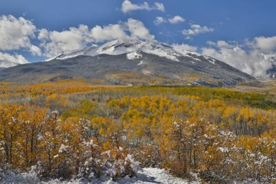 Rocky Mountains, Colorado. Fall Colors of Aspens and fresh snow Keebler Pass by Darrell Gulin