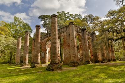 Ruins of Old Sheldon Church, South Carolina by Darrell Gulin