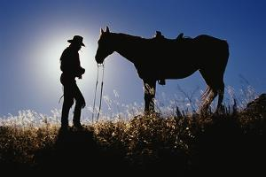 Silhouettes of Cowboy and Horse by Darrell Gulin