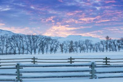 Wintertime sunrise The Hideout Ranch, Shell, Wyoming. by Darrell Gulin
