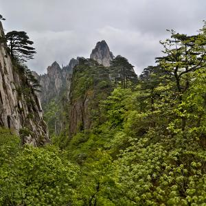 Yellow Mountains a UNESCO World Heritage Site by Darrell Gulin