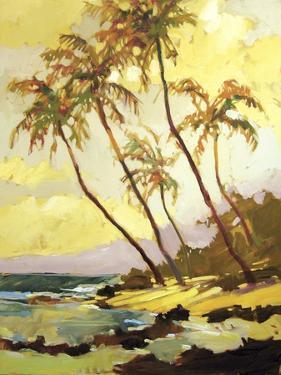 Island Dream by Darrell Hill