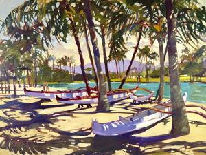 Three Canoes and Palm Shadows by Darrell Hill