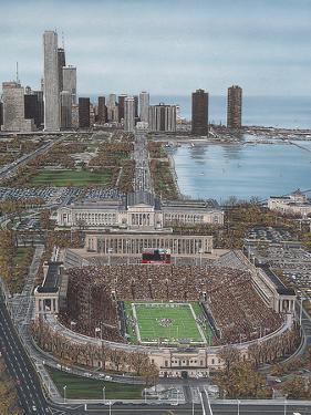Chicago's Soldier Field by Darryl Vlasak