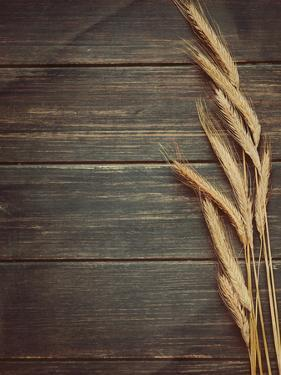 Vintage Wheat Background by daughter