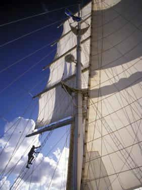 Crew Member Climbing Mast of the Star Clipper, Caribbean by Dave Bartruff