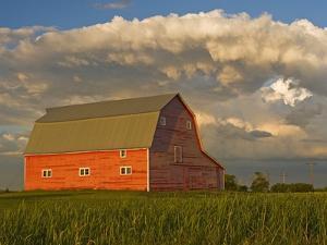 Barn and Cumulonimbus Cloud Mass near Bromhead, Saskatchewan, Canada by Dave Reede