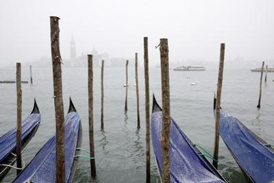 A Rare Snow Shower Powders Gondolas in Venice Near Piazza San Marco by Dave Yoder