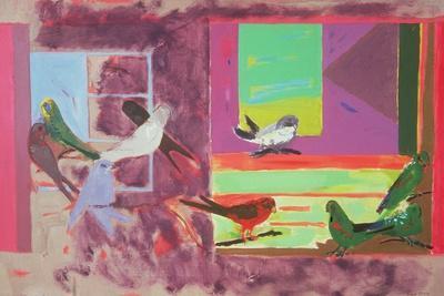 Birds Together, 1971