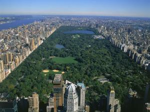 Aerial View of Central Park, NYC by David Ball