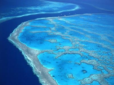 Hardy Reef, Queensland, Australia by David Ball