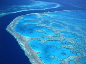 Hardy Reef, Queensland, Australia by David Ball