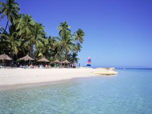 Island in Fiji by David Ball